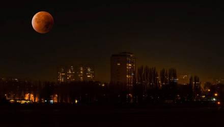 Гомельчане ночью 19 февраля могут увидеть главное суперлуние 2019 года, не проспите