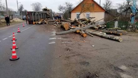 «Водителя мы забрали — отец хотел его убить». Что творилось в Ружанах, где брёвна с лесовоза раздавили семью