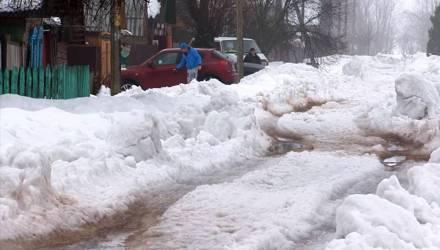 Жители деревни под Гомелем пожаловались на бездорожье (видео)