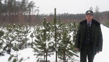 Лучшим лесничим 2018 года стал Виктор Голос из Петриковского лесхоза