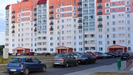 В Гомеле многодетным семьям рекомендуют обратить внимание на индивидуальное строительство