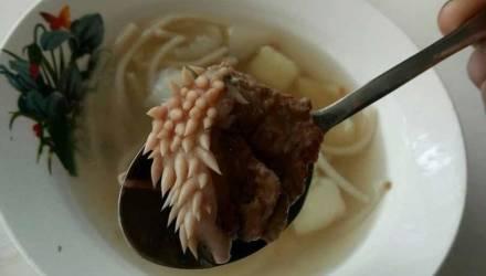 """Директор школы объяснила, как мясо с """"щупальцами"""" попало в суп"""