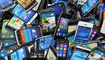 В Речице украли 64 смартфона на сумму свыше $3000, а в лесу нашли 520 литров спирта и 500 бутылок водки