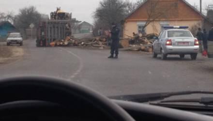 В Пружанском районе на пешеходов упали брёвна лесовоза: 6-месячный малыш и его бабушка погибли