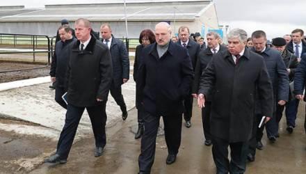 Видео с реакцией Лукашенко на ситуацию в Могилевской области возглавило тренды YouTube с 1,6 млн просмотров