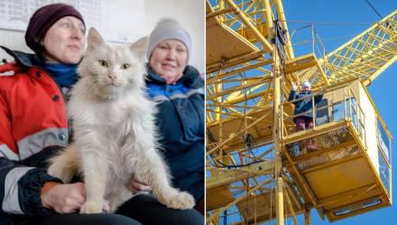 Небо и никакой пенсии. Крановщице из Жлобина по паспорту нет и 14 — а она 37 лет строит дома