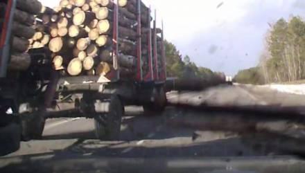 """""""Пункт назначения какой-то"""". В Калинковичском районе в легковушку прилетел кусок дерева со встречного лесовоза (видео)"""