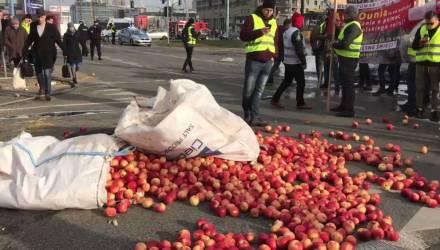 Высыпали яблоки и подожгли покрышки: протест фермеров начался в Польше