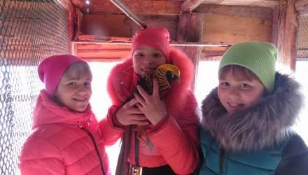 Гомель не без добрых людей: дарят фазанов, магнитофоны и трудоустройство