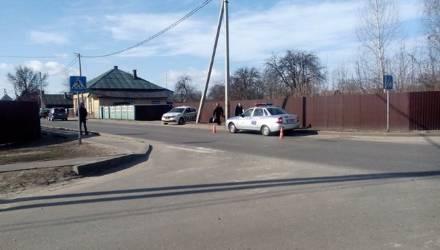 В Речице на маленькую девочку набросилась собака, школьница испугалась и выскочила на дорогу - её сбил автомобиль