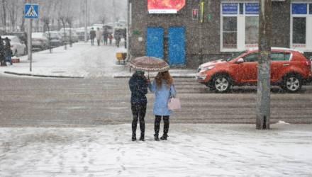 Март такой декабрь... На Гомель обрушился снегопад – фоторепортаж с улиц