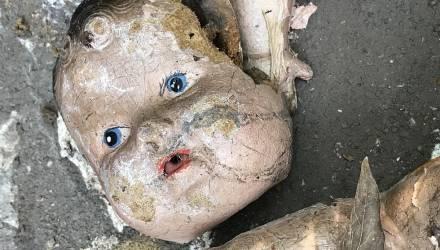 Теперь в Подмосковье. Полицейские нашли ещё одну пятилетнюю девочку-маугли