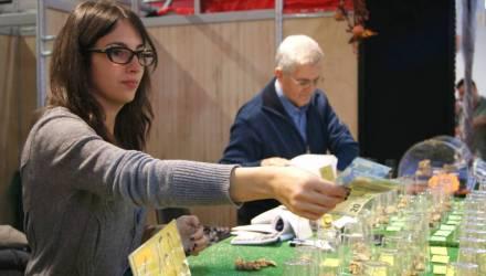 В Италии ввели обещанный базовый доход для безработных и бедных в 500 евро