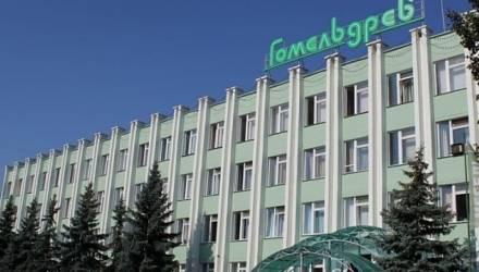 Государство заплатит по долгам «Гомельдрева», «Речицадрева» и Светлогорского ЦКК