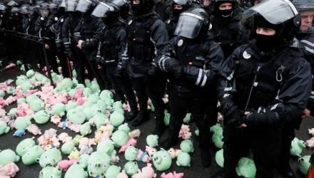 Плюшевый протест. В Киеве националисты забросали полицейских игрушечными свиньями