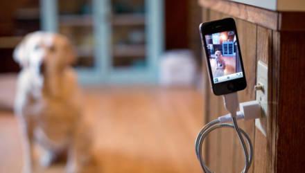 Эксперт объяснил, почему нельзя заряжать смартфон до 100%