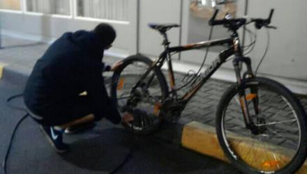 В Гомеле мужчина пытался похитить у несовершеннолетнего велосипед и сотовый телефон