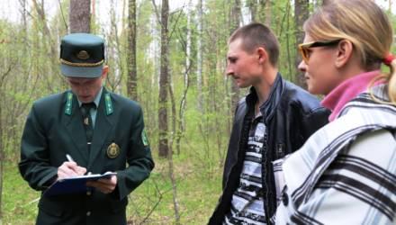 Не шути с огнём: в Гомельском районе провели мониторинг по предупреждению лесных пожаров