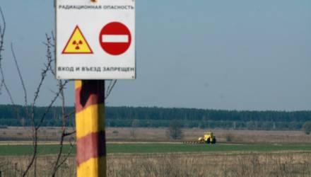 Жительницы Гомеля зарегистрировались в Чечерске ради повышенного пособия на ребёнка: средства придётся вернуть