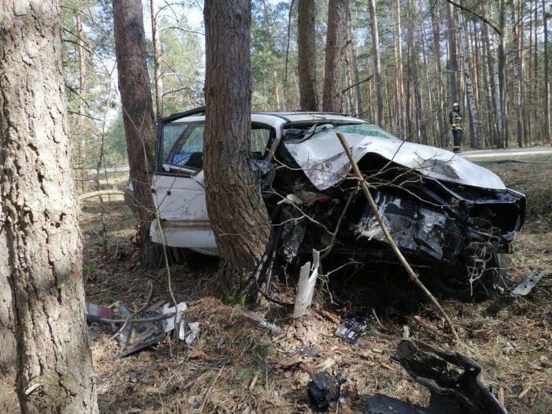 В Речицком районе пьяная женщина-водитель съехала в кювет и врезалась в деревья – мужчина-пассажир в реанимации