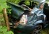В Речицком районе на дорогу внезапно стало падать дерево. Renault вылетел в кювет, пострадал ребёнок