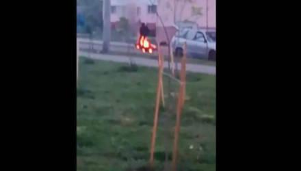 В Гомеле на ходу открытым пламенем загорелся мотоцикл – видео