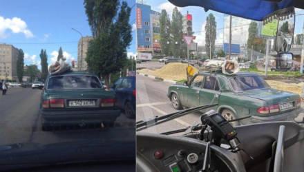 Фотофакт: россиянин перевозил мертвеца в мешке на крыше автомобиля