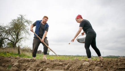 «До 23 лет я ненавидел огород». Репортаж с поля о том, как молодая семья сажала картошку