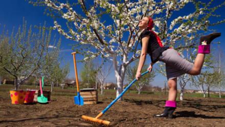 Лунный календарь садовода-огородника на вторую половину 2019 года