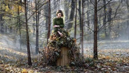 На Гомельщине осталось только три района, где по-прежнему действует запрет на посещение леса