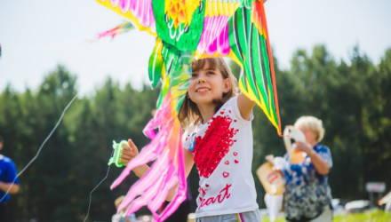 Фестиваль воздушных змеев пройдёт в Гомеле 1 июня
