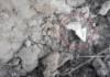 Жители Речицы долго не могли найти закладку с наркотиком. Помогли оперативники