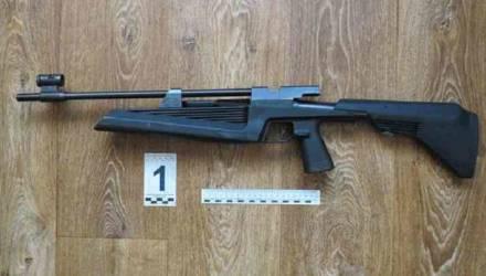 В Лиде 3-летняя девочка выстрелила из винтовки в голову своего ровесника
