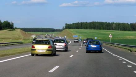 Под Гомелем водители остановили трассу М5. Причина заставит улыбнуться