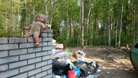 «Аккуратно положила его в мусорку». В Бресте за убийство новорожденного сына судят 37-летнюю женщину