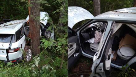 В Лельчицком районе женщина на мощном внедорожнике отвлеклась от управления, съехала в кювет и наехала на дерево
