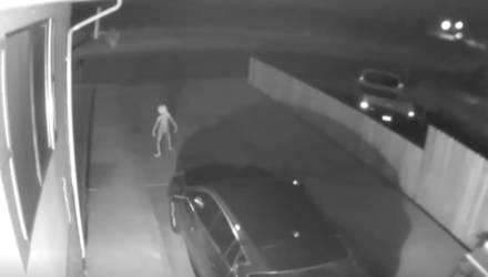 Девушка выложила ролик, где у её дома ночью гуляет неопознанное жуткое существо