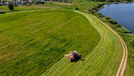 Президент обсудил с Владимиром Дворником и Анатолием Хотько состояние дел в аграрной отрасли в связи с жарой