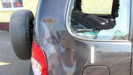 В Мозырском районе пьяный безработный мужчина изрубил топором автомобиль работающего агронома