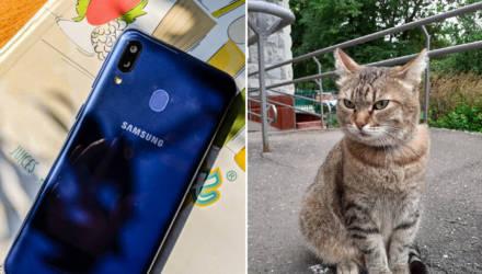 Лучший бюджетник весны? Samsung сделала смартфон за $200 не хуже Xiaomi