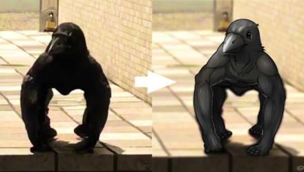 Видео с мускулистой вороной вызвало панику среди пользователей