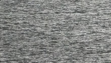 Отдыхал со сверстниками, пошёл в воду... Подробности происшествия в Рогачёве, где утонул школьник