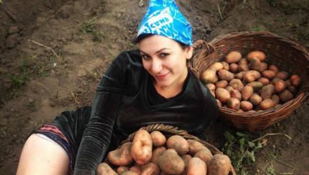 Жара бушевала. Будут ли гомельчане в этом году с картошкой, яблоками и хлебом?