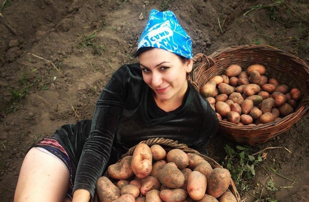 копаем картошку приколы фото того