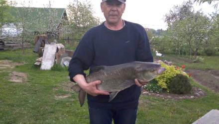 «Смотрели друг на друга с недоумением». Белорус поймал рыбу-великана весом в 6 кг