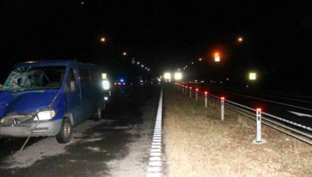 На гомельской трассе водитель из-за проливного дождя не разглядел и насмерть сбил супружескую пару