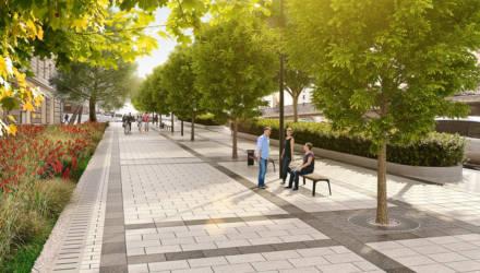 В Гомеле предлагают обсудить схемы озеленения территорий городских районов