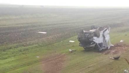 В Гомельской области микроавтобус вылетел в кювет и опрокинулся: водитель погиб