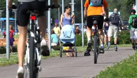 Велосипедист сбил на велопешеходной дорожке женщину, она умерла в больнице: приговор суда