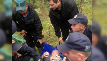 Хорошая новость. Найдены двое заблудившихся в лесу гомельчан